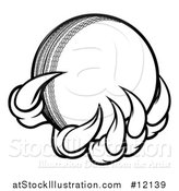 Vector Illustration of a Black and White Monster or Eagle Claws Holding a Cricket Ball by AtStockIllustration