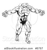 Vector Illustration of a Black and White Muscular Bulldog Man Mascot Attacking by AtStockIllustration