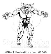 Vector Illustration of a Black and White Muscular Wolf Mascot Standing in a Threatening Stance by AtStockIllustration
