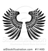 Vector Illustration of a Black and White Pair of Feathered Wings by AtStockIllustration