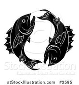 Vector Illustration of a Black and White Pisces Zodiac Astrology Fish by AtStockIllustration