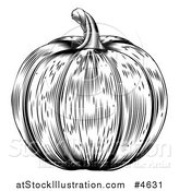 Vector Illustration of a Black and White Pumpkin by AtStockIllustration