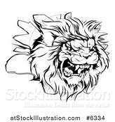 Vector Illustration of a Black and White Roaring Angry Lion Head Breaking Through a Wall by AtStockIllustration