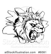 Vector Illustration of a Black and White Roaring Lion Head Breaking Through a Wall by AtStockIllustration