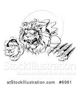Vector Illustration of a Black and White Roaring Lion Mascot Shredding Through a Wall by AtStockIllustration
