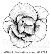 Vector Illustration of a Black and White Rose Flower in Woodcut Style by AtStockIllustration