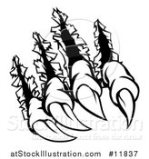 Vector Illustration of a Black and White Sharp Claws Shredding Through Metal by AtStockIllustration