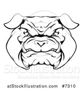 Vector Illustration of a Black and White Snarling Bulldog Face by AtStockIllustration