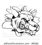 Vector Illustration of a Black and White Snarling Wolf Mascot Head Breaking Through a Wall by AtStockIllustration