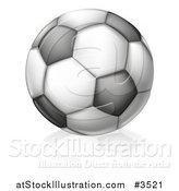 Vector Illustration of a Black and White Soccer Ball and Reflection by AtStockIllustration