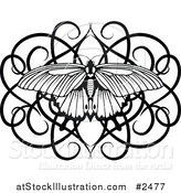 Vector Illustration of a Black and White Swirl Butterfly by AtStockIllustration
