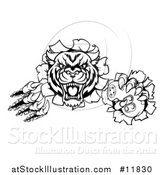 Vector Illustration of a Black and White Tiger Mascot Shredding Through a Wall and Holding a Video Game Controller by AtStockIllustration