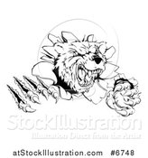 Vector Illustration of a Black and White Vicious Aggressive Bear Mascot Slashing Through a Wall by AtStockIllustration