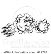 Vector Illustration of a Black and White Vicious Bear Mascot Slashing Through a Wall with a Cricket Ball in a Paw by AtStockIllustration