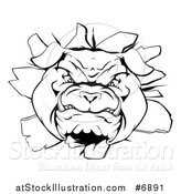 Vector Illustration of a Black and White Vicious Bulldog Breaking Through a Wall by AtStockIllustration