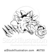 Vector Illustration of a Black and White Vicious Fox Monster Shredding Through a Wall by AtStockIllustration