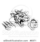 Vector Illustration of a Black and White Vicious Tiger Mascot Slashing Through a Wall by AtStockIllustration