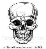 Vector Illustration of a Black and White Vintage Human Skull by AtStockIllustration