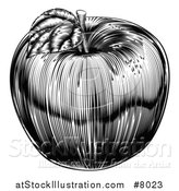 Vector Illustration of a Black and White Vintage Woodcut Apple by AtStockIllustration