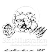 Vector Illustration of a Black and White Wild Cat Slashing Through a Wall by AtStockIllustration