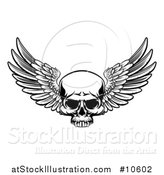 Vector Illustration of a Black and White Winged Skull by AtStockIllustration
