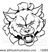 Vector Illustration of a Black and White Wolf Mascot Head Breaking Through a Wall by AtStockIllustration