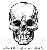 Vector Illustration of a Black and White Woodcut Etched or Engraved Skull by AtStockIllustration