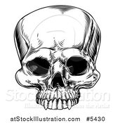 Vector Illustration of a Black and White Woodcut Human Skull by AtStockIllustration