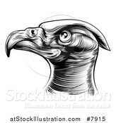 Vector Illustration of a Black and White Woodcut or Engraved Bald Eagle Head by AtStockIllustration