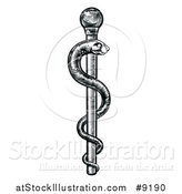 Vector Illustration of a Black and White Woodcut or Engraved Medical Rod of Asclepius with a Snake by AtStockIllustration