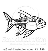Vector Illustration of a Black and White Xray Fish by AtStockIllustration