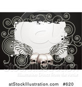 Vector Illustration of a Black Background with Spirals and Three Human Skulls with Wings by AtStockIllustration