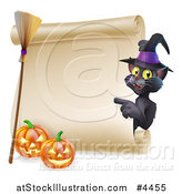 Vector Illustration of a Black Cat Wearing a Witch Hat and Pointing to a Scroll Sign with a Broomstick and Halloween Pumpkins by AtStockIllustration
