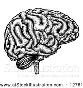 Vector Illustration of a Black Etched Human Brain by AtStockIllustration