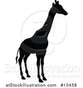 Vector Illustration of a Black Silhouetted Giraffe by AtStockIllustration
