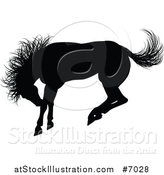 Vector Illustration of a Black Silhouetted Horse Bucking by AtStockIllustration