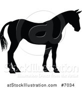 Vector Illustration of a Black Silhouetted Horse Facing Right by AtStockIllustration