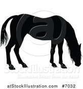 Vector Illustration of a Black Silhouetted Horse Grazing by AtStockIllustration