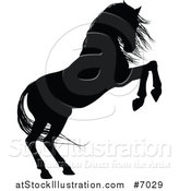 Vector Illustration of a Black Silhouetted Horse Rearing by AtStockIllustration