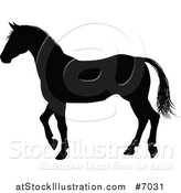 Vector Illustration of a Black Silhouetted Horse Walking by AtStockIllustration