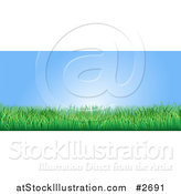 Vector Illustration of a Blue Sky and Green Grass Website Banner by AtStockIllustration