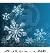 Vector Illustration of a Blue Winter Background with 3d Icy Snowflakes and Copyspace by AtStockIllustration