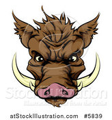 Vector Illustration of a Brown Aggressive Boar Mascot Face by AtStockIllustration