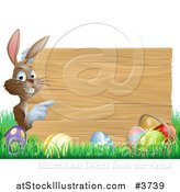 Vector Illustration of a Brown Bunny Pointing to a Wooden Sign over Easter Eggs in Grass by AtStockIllustration