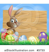 Vector Illustration of a Brown Easter Bunny with Eggs in Grass and a Basket by a Wood Sign with Blue Sky by AtStockIllustration