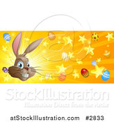Vector Illustration of a Brown Easter Bunny with Stars Eggs and Rays by AtStockIllustration
