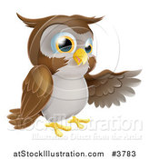 Vector Illustration of a Brown Owl Presenting by AtStockIllustration