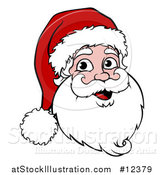 Vector Illustration of a Cartoon Christmas Santa Claus Face by AtStockIllustration