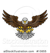 Vector Illustration of a Cartoon Fierce Swooping Bald Eagle with Talons Extended, Flying Forward by AtStockIllustration