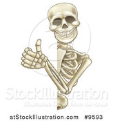 Vector Illustration of a Cartoon Human Skeleton Giving a Thumb up Around a Sign by AtStockIllustration